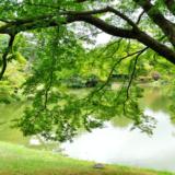 天皇陛下の京都奈良訪問時の宿泊先ホテルはどこ?日程は?2019年3月