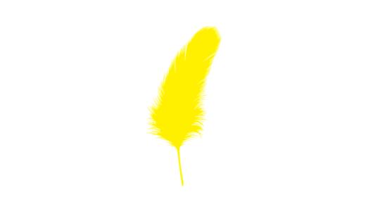 安倍総理の胸元の黄色い羽根の意味は?強化期間は?募金活動はある?