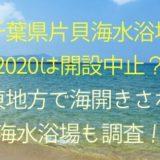 千葉県片貝海水浴場2020は開設中止?関東地方で海開きされる海水浴場も調査!