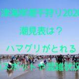 富津海岸潮干狩り2020の潮見表は?ハマグリとれる無料スポットや混雑状況も調査!