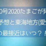 台風10号2020たまごが発生!進路予想と東海地方(愛知県)の最接近はいつ?